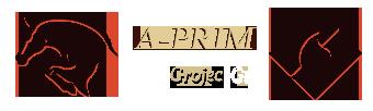 A-prim